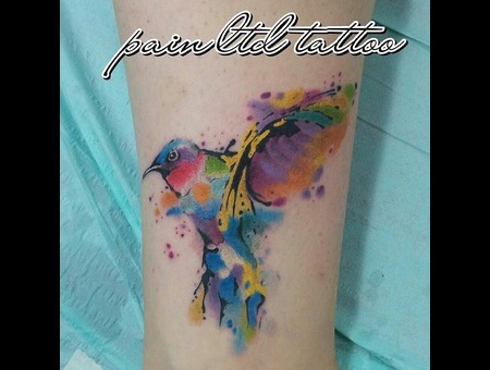 Bird.Color.Paint.Aquarelle Lower Leg