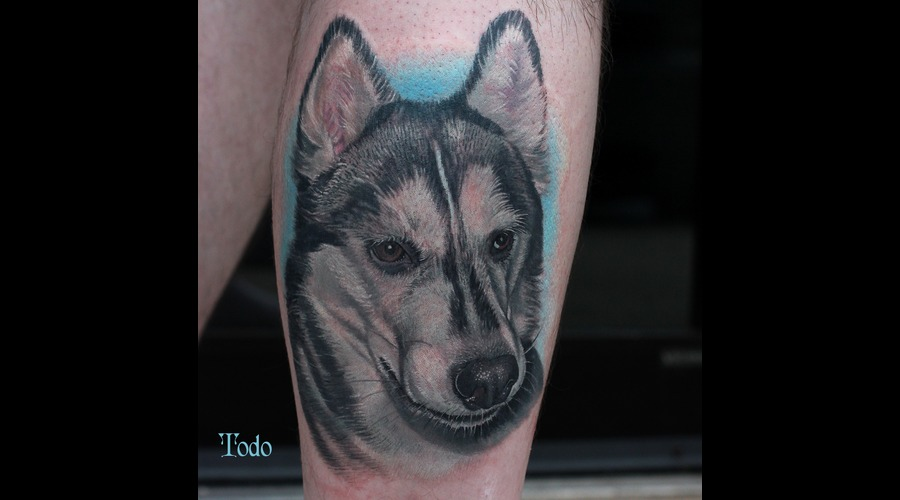 Huskey.Dog Portrait Arm