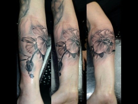 Orchid Reptilia Floral Realism Girly Arm