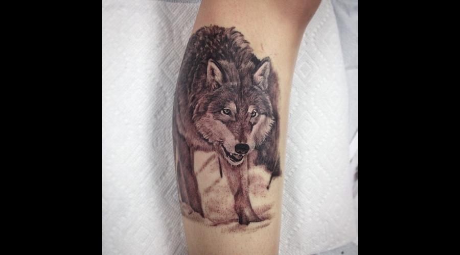 Wolf  Animal Protrait Lower Leg