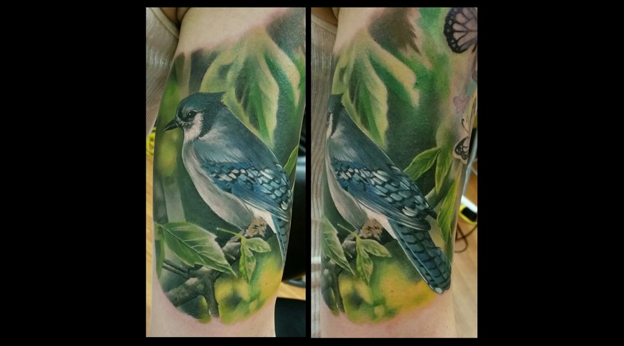 Realism  Bird  Color  Abstract Arm