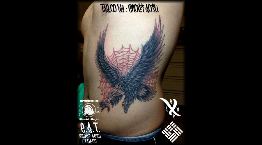 Eagle  Spider Web Black Grey Ribs