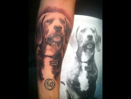 Portrait  Realistic  Black And Grey  Animal  Dog Forearm