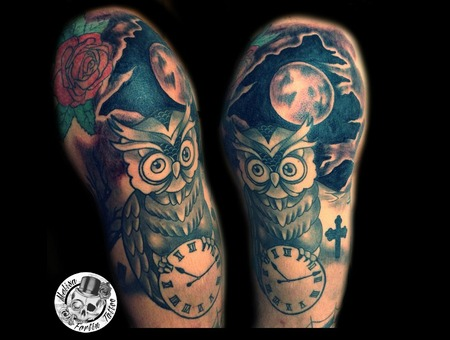 Owl  Night Sky  Night  Clock Arm