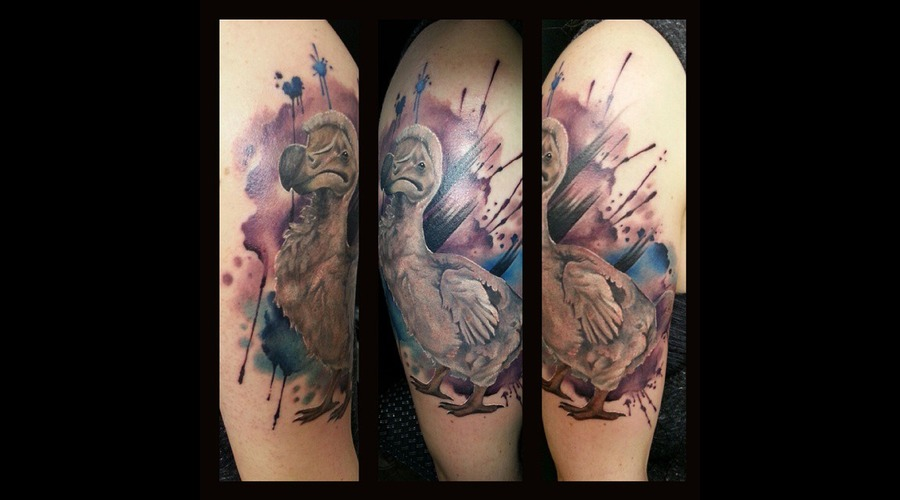 #Watercolor #Tattoo #Dodo