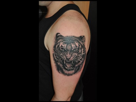 Tiger Tattoo Black & Gray Arm