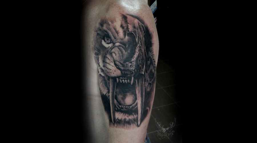Sabre  Tooth  Tiger  Skull Arm