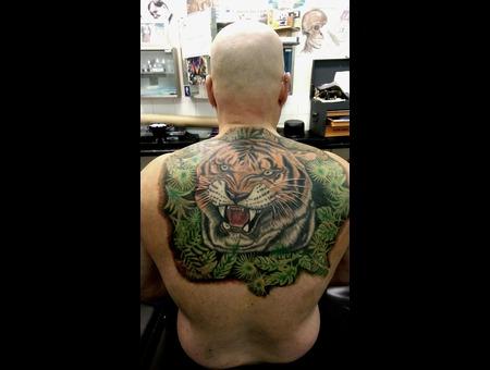 Tiger  Jungle Back