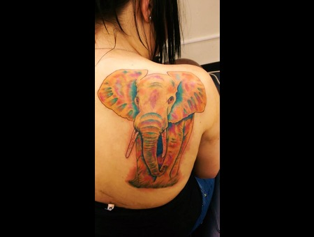 Elephant  Water Colour Back