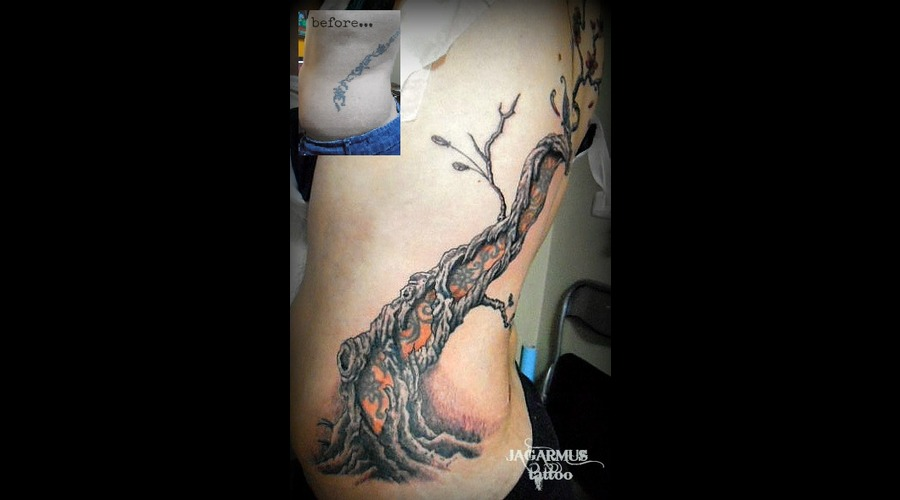 Cover Up Arbol Cerezo Ribs