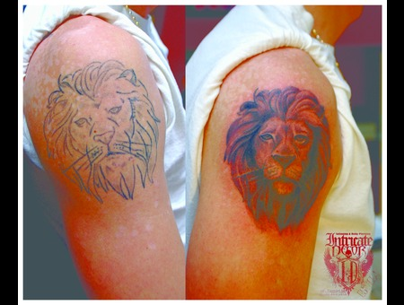 Coverup Fix Lion Epicfail Fail  Arm