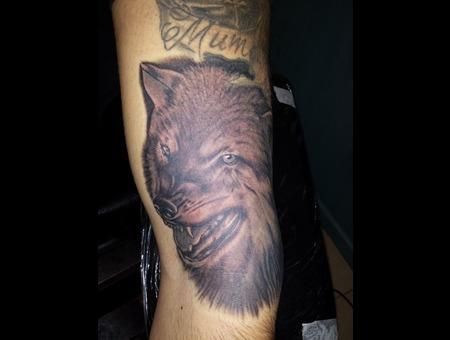 Wolf Arm