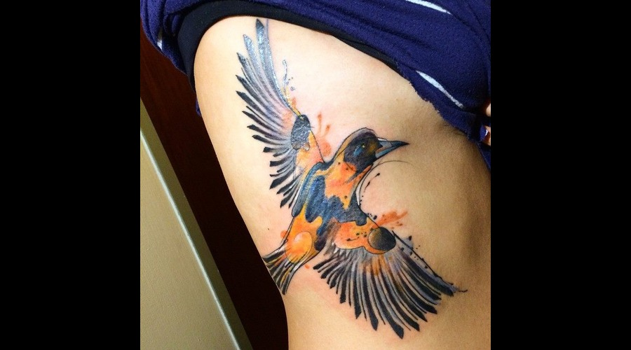 Tattoo  Trash  Bird  Art  Watercolor Ribs