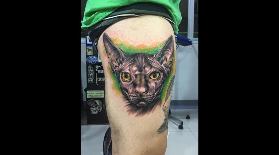 Sphinx Cat Thigh