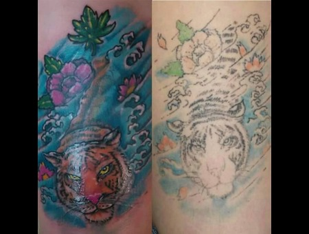 Color  Japanese  Redo Thigh