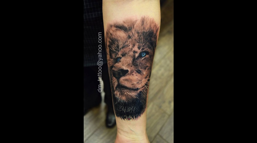 Lion  King  Jungle  Wild Lower Leg