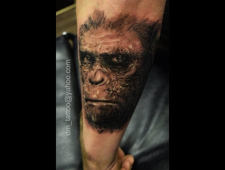 Ape  Monkey Forearm