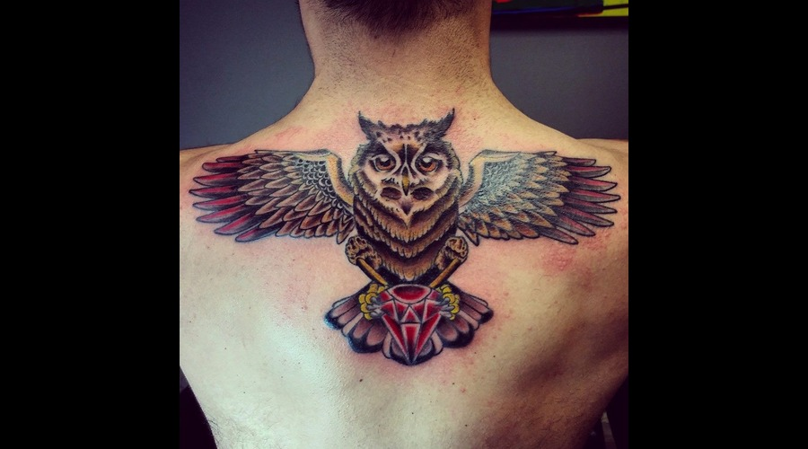 Traditional Owl  Back