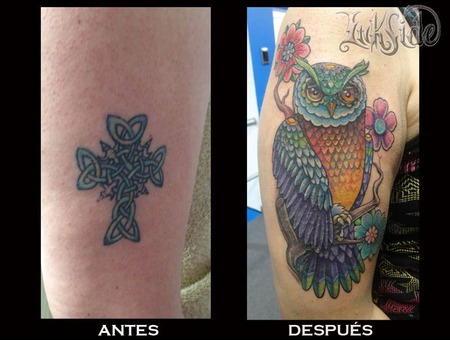 Cover Up  Owl  Buho  Full Color   Arm