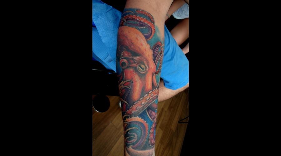 Octopus  Pulpo  Color Realism   Forearm