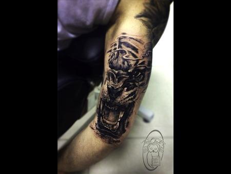 Tiger  Realistic Tiger   Arm