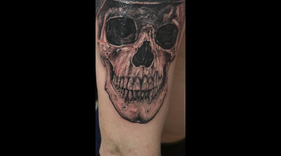 Fragment Skull