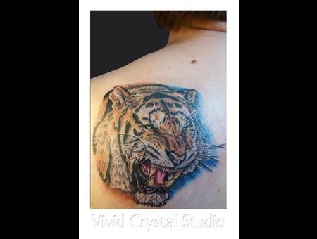 Tiger Realism Shoulder