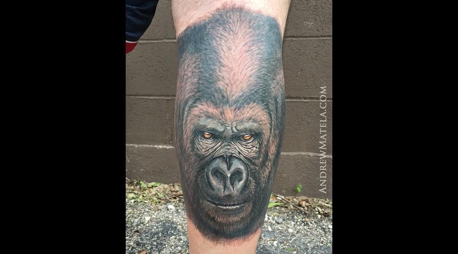 Gorilla  Portrait  Realism  Austin  Atx  Texas Lower Leg