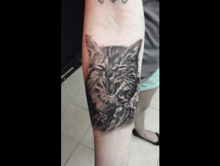 Realistic Cat Forearm
