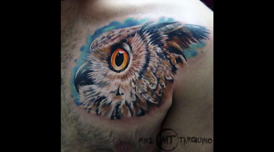 Mike Tarquino  Tattoo  Ink  Owl