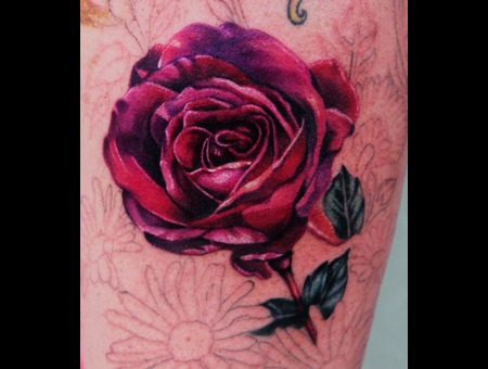 Rose  Flowers Color Arm