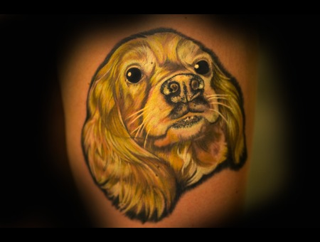 Dog Portrait Realism Color  Thigh