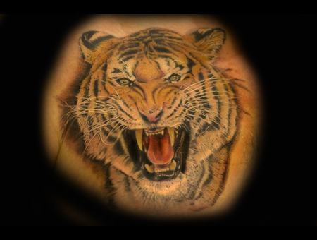 Colored Tiger Realism Animal Tattoos Chest