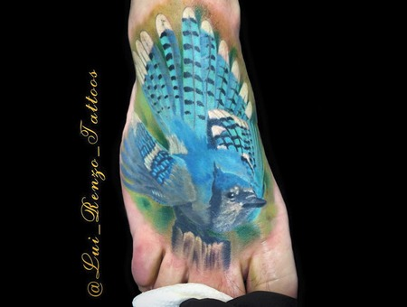Custom  Realism  Color  Bird  Bluejay Foot