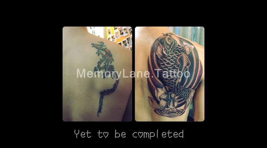 Coverup Koi Fish Cover Up Japanese Chinese Back