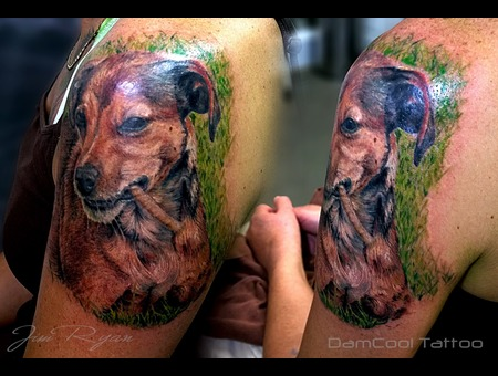 Portrait   Dog   Arm