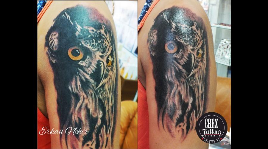 Owl  Owltattoos  Tattoos  Erkannehir  Marmaris  Turkey  Crextattoostudio Shoulder