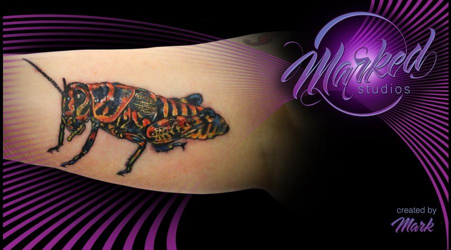 Grasshopper Arm