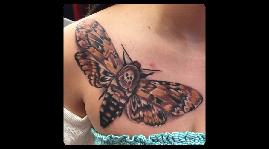 Death Moth  Colour  Color  Chest  Women's Chest Piece  Skull Chest
