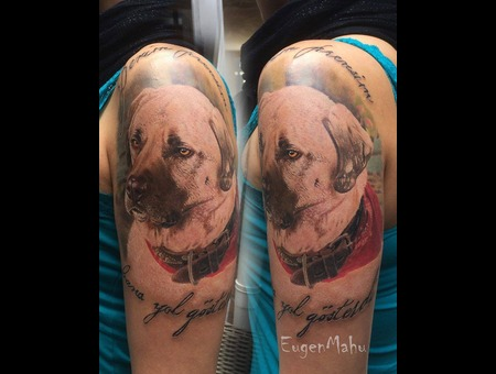 Dog  Portrait  Realistic  Realism  Art  Tattoo Arm