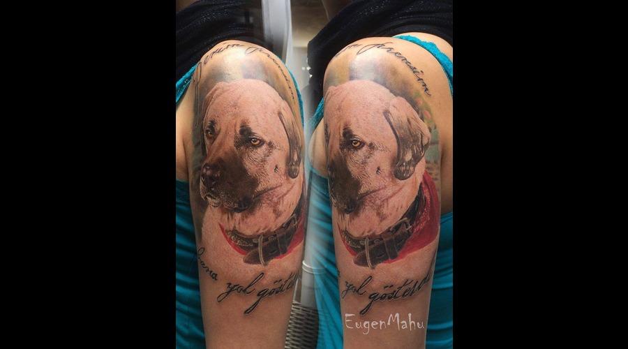Dog  Portrait  Realistic  Realism  Art  Tattoo Arm