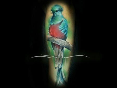 Quetzal  Color  Realistic Forearm