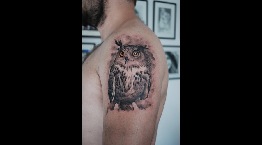 Owl Realistic Arm