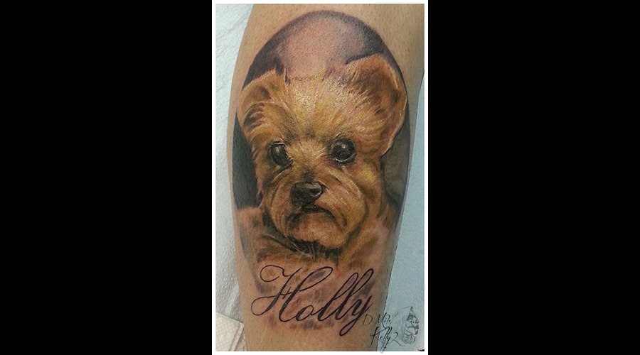 Dog Portrait Color Realism Memorial Pittsburgh Lower Leg