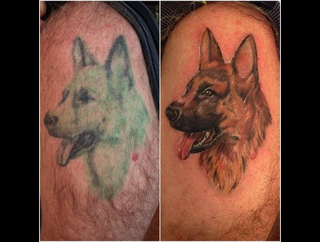 Dog  Portrait  Coverup  Repair  German Sheppard Arm