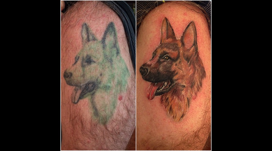 Dog  Portrait  Coverup  Repair  German Sheppard Arm