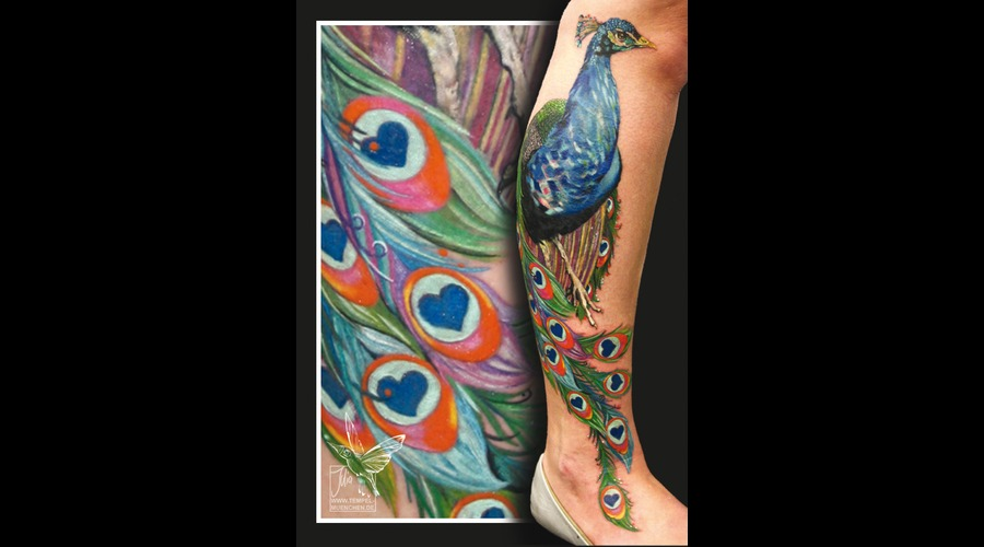 Peacock  Hearts  Painting  Painted  Cover Up Lower Leg