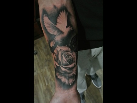 Rose  Dove  Black And Grey Forearm