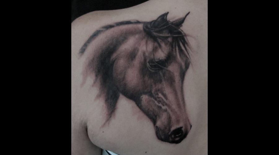 Horse Portrait Tattoo Shoulder