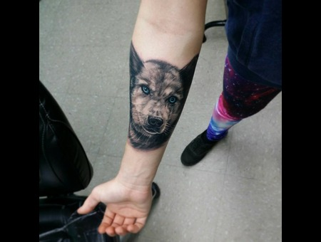 Portrait  Dog  Eyes  Realism  Forearm